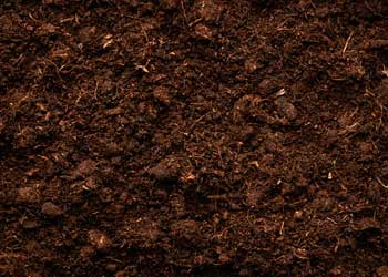 Topsoil, Compost, Fill